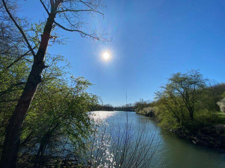 Blick über einen Teich auf die untergehende Sonne, rechts und links des Teiches sind Büsche zu sehen.
